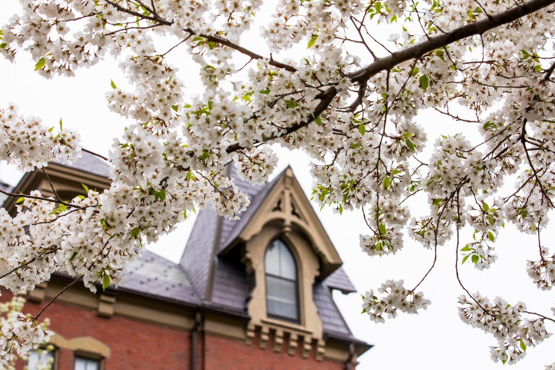 Inside Admissions · Tufts Admissions