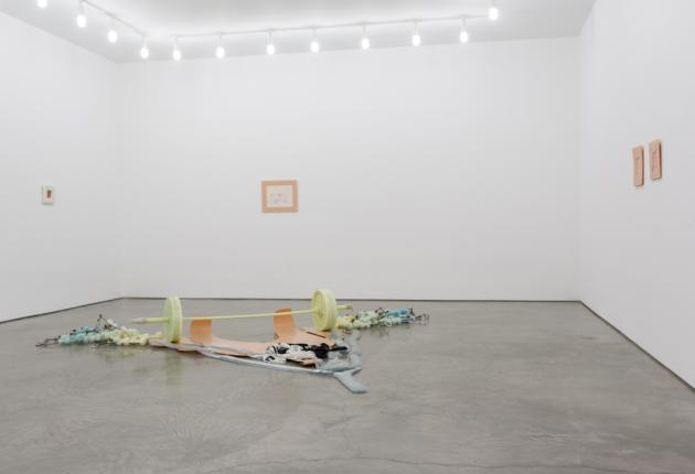 Matthew Barney: Facility of DECLINE, Gladstone Gallery